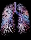 COPD: Improving Patient Outcomes: You Can Make a Difference