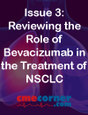 Non-Small Cell Lung Cancer i-Newsletter Series Issue 3: Reviewing the Role of Bevacizumab in the Treatment of NSCLC