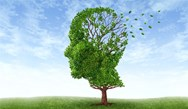 Meeting Diagnostic Challenges in Alzheimer's Disease: Recent Onset of Moderate Memory Impairment