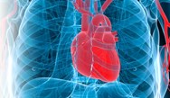 High Sensitivity Cardiac Troponin Biomarker Assays in Cardiovascular Disease