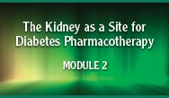 The Kidney as a Site for T2DM Pharmacotherapy