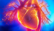 Advances in Cardiovascular Risk Reduction