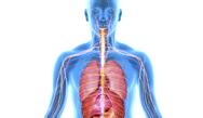 Internal Medicine Self-Assessment for Physician Assistants