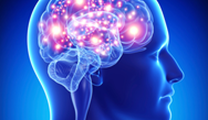 Comprehensive Review of Neurology