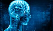 Neurology ABPN Exam Question Bank (100 CME / MOC Credits)