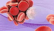 The Evolving Role of Oral Anticoagulation in Internal Med
