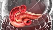 Therapeutic Synergies of Basal Insulin Plus GLP-1 RAs