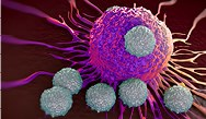 Immunotherapy: A Look at the Future in Managing Difficult-to-Treat Cancers