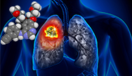 Novel Therapeutic Approaches of EGFR-, ALK-Rearranged Targeted Therapies and Immunotherapy of Lung Cancer