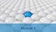 Module 1: Risk Assessment in Ulcerative Colitis: Keypoints