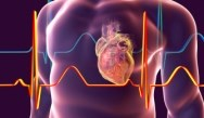 Updated Guidelines and New Therapies for the Diagnosis and Treatment of HF