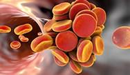Progress in the Reversal of Direct Oral Anticoagulants