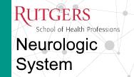 PANCE/PANRE Review: Neurology