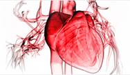 Assessing Risk and Appropriate Triage of Patients With Worsening Chronic Heart Failure Case Clinic