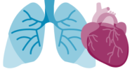 The Intersection Between COPD & Cardiometabolic Conditions