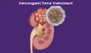 Mapping the Future Treatment Options with Multitargeted TKIs and Checkpoint Inhibitors for Metastatic Renal Cell Carcinoma