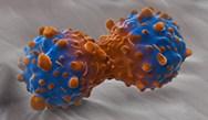 Targeting EGFR Mutation-positive NSCLC: Critical Advances in Care