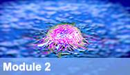 Emerging Strategies in Novel Targeted Therapies for Genitourinary Cancers (Prostate Cancer, Renal Cell Carcinoma and Urothelial Bladder Carcinoma) - Module 2