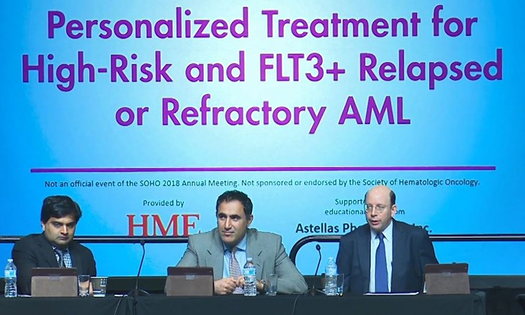 Personalized Treatment for High-Risk and <em>FLT3</em>+ Relapsed or Refractory AML