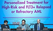 Personalized Treatment for High-Risk and FLT3+ R/R AML