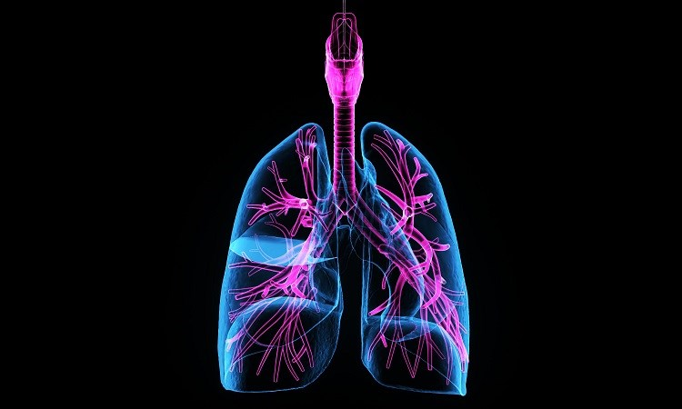 Clinical Case Challenges: Timely Diagnosis of Pulmonary Fibrosis