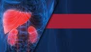 Reducing Glycemic Variability in Type 1 Diabetes