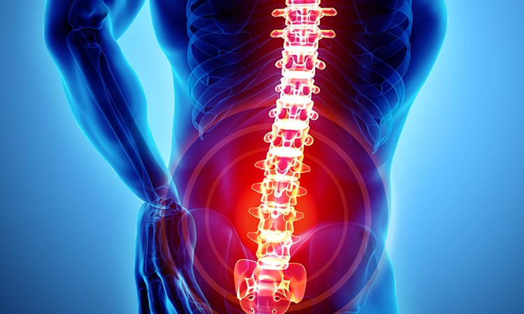 Warrior-Centric Low Back Pain Management: Non-pharmaceutical Options