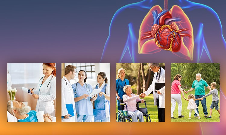 Applying Evidence-Based Guidelines to Reduce Hospitalizations and Readmissions for Chronic Heart Failure