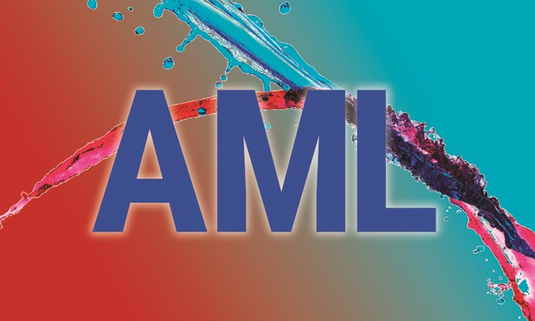 Viewpoints in AML: Taking Progress Forward