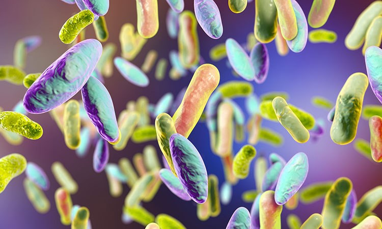 Improving the Lives of Patients with <em>Clostridium difficile</em> Infection One Case at a Time