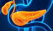 Expert Perspectives on the Diagnosis and Treatment of Exocrine Pancreatic Insufficiency