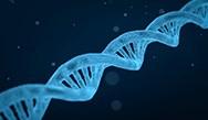 Comprehensive Genomic Profiling: Towards Precision Medicine