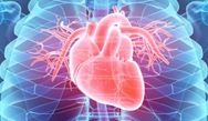 Improving Quality of Care and Outcomes in Heart Failure