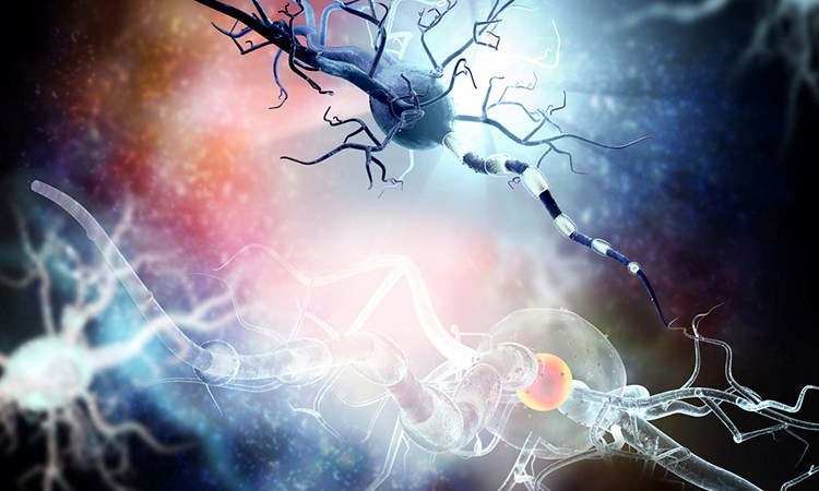 Applying Efficacy and Safety Science to Develop Individualized Treatment Plans for Patients with Multiple Sclerosis